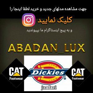 نمایندگی محصولات دیکیز _ پست تهران